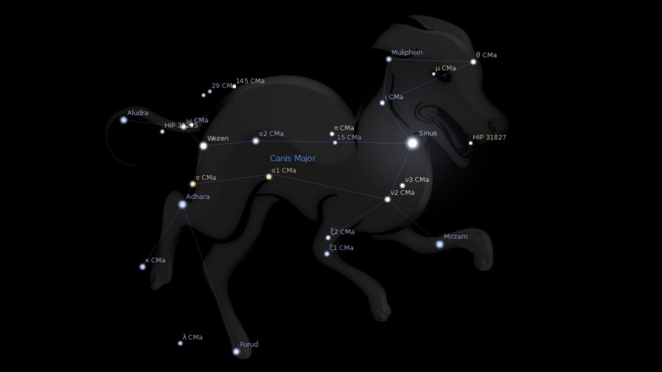 Constellation Canis Major Astrology