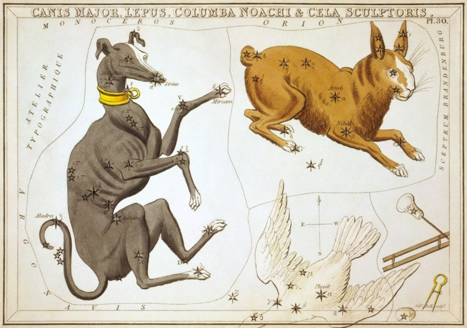 Constellation Lepus Astrology