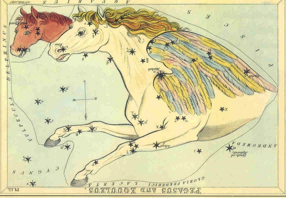 Pegasus Constellation Stars