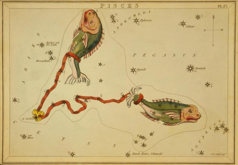 Constellation Pisces Astrology