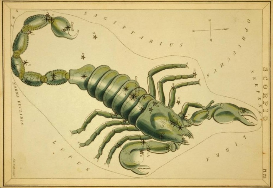 Constellation Scorpio Astrology