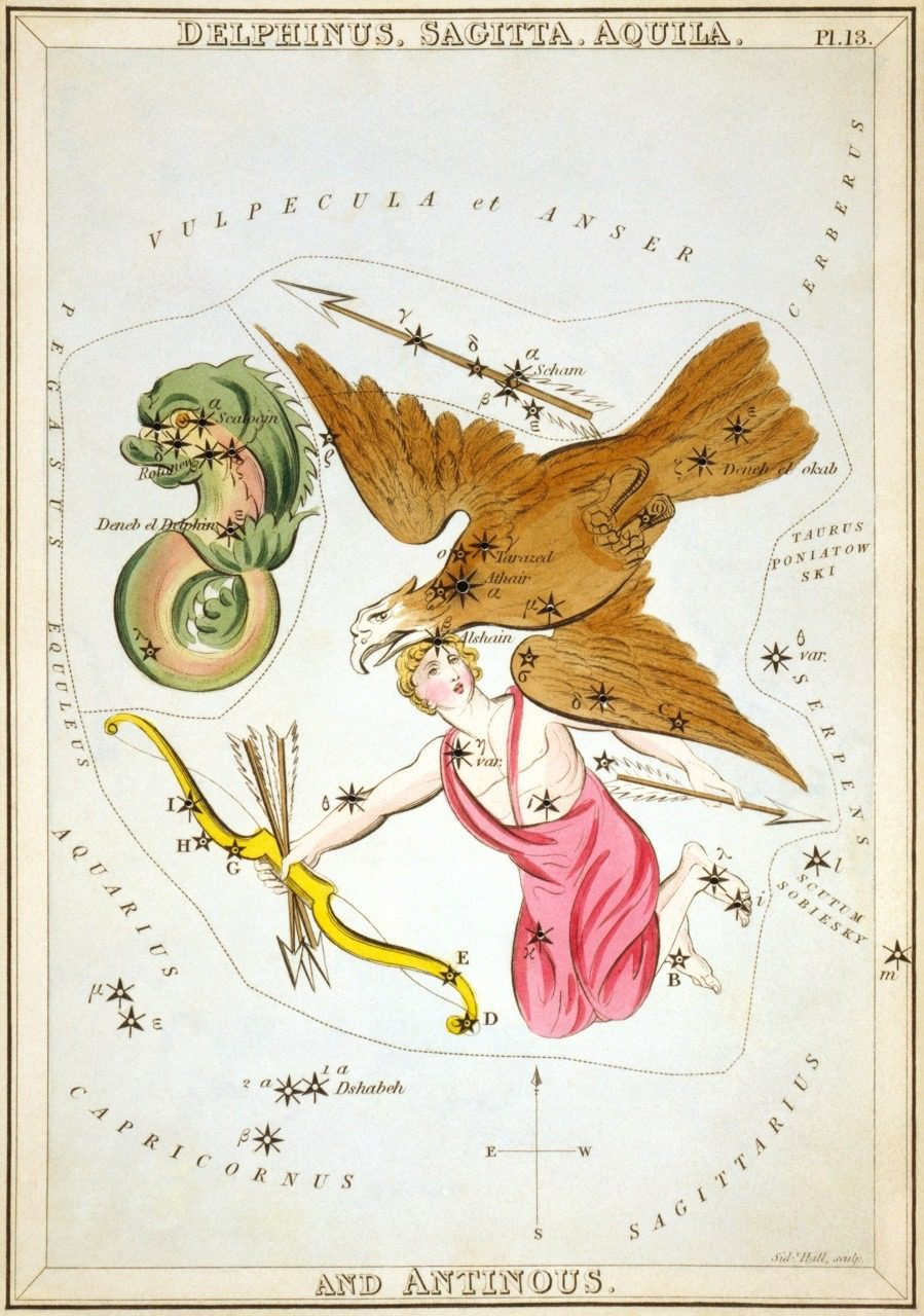 Constellation Delphinus Astrology