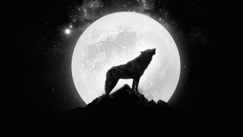 Full Moon May 2019 Astrology
