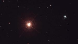 Menkar Star, Alpha Ceti