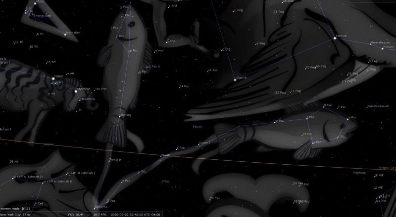 Pisces Constellation Stars – Astrology King