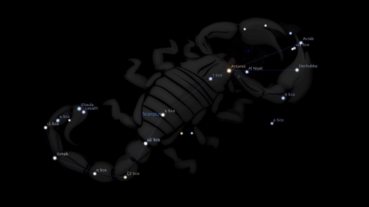 Scorpius Constellation Stars Astrology King
